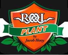 Rolplant.ro